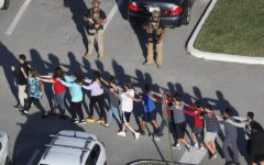 Stoneman Douglas High School Shooting