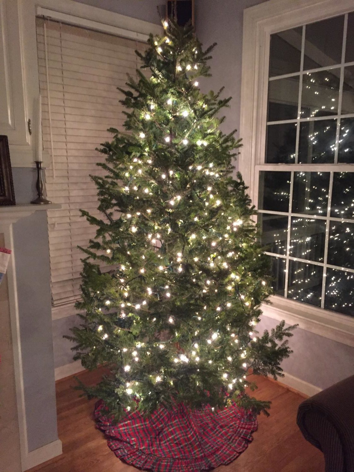 The beautiful Christmas Tree sparkles with Christmas lights before being decorated.