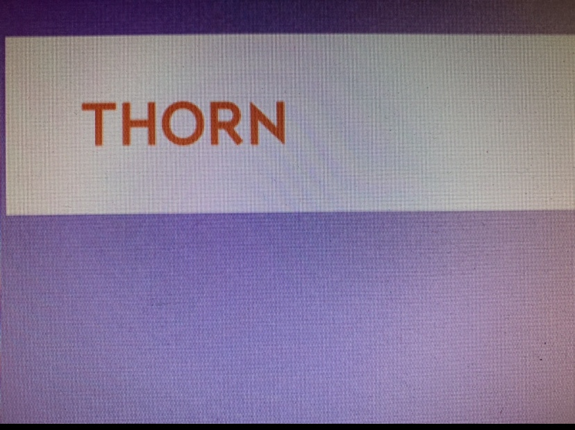 Thorn: The Digital Defenders of Children