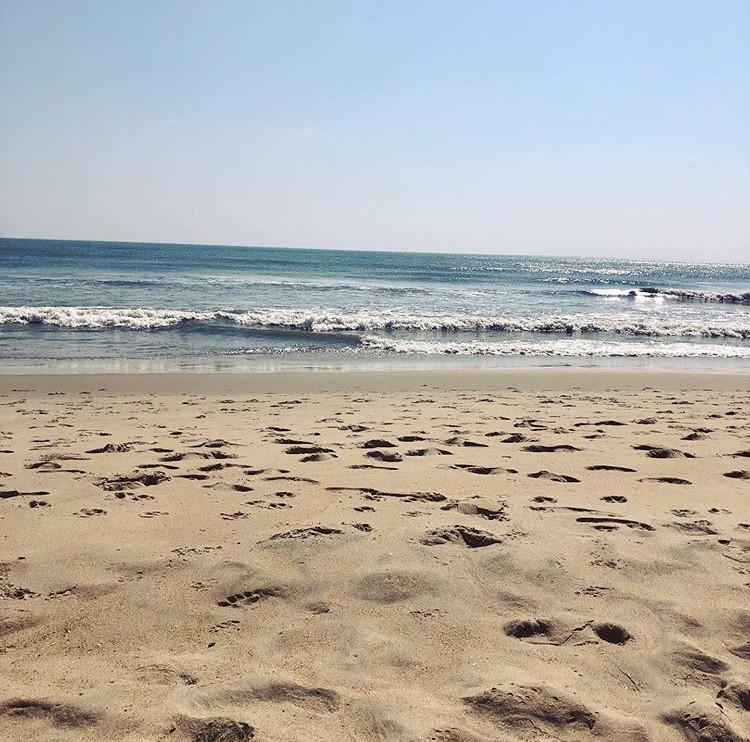 Virginia+Beach+is+a+favorite+weekend+destination+for+reisdents+in+Hampton+Roads.