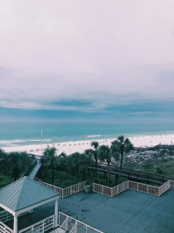 Seeing the Sunshine State