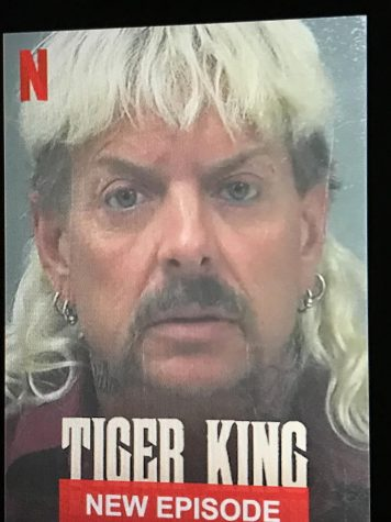 Tiger King: Worth the Watch?