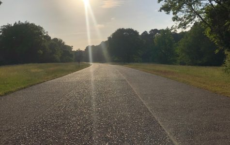 Due to the pandemic, they have closed off some of the Colonial Parkway to limit travel. This gives you the opportunity to go on a walk, run and even a bike ride on the beautiful Parkway.