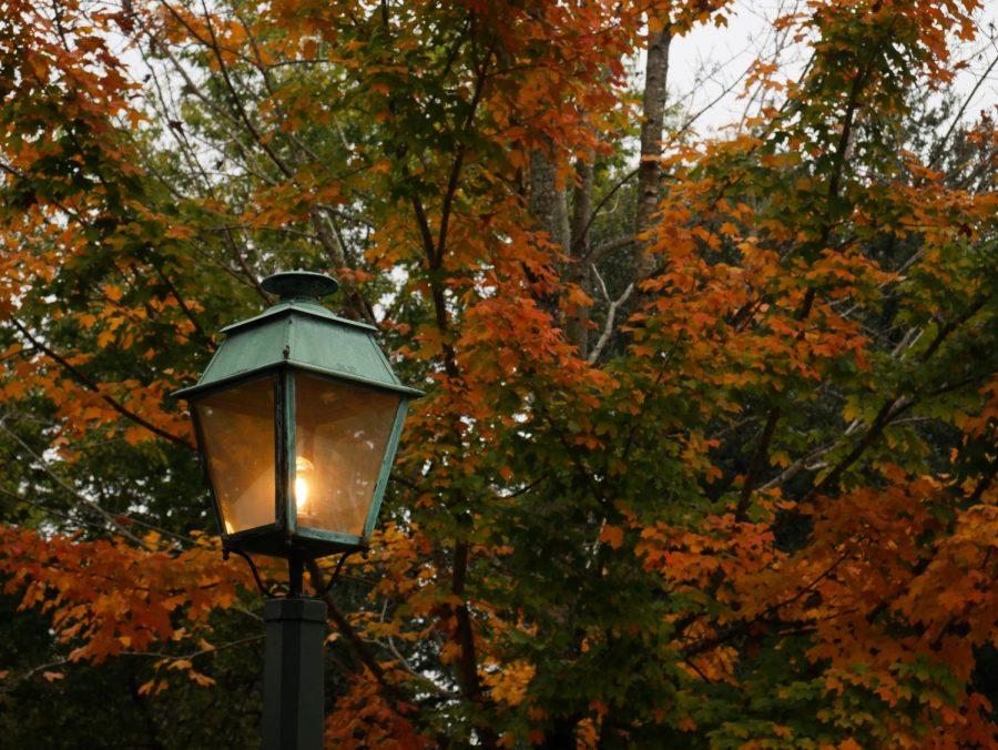 Autumn in Williamsburg: A Photo Essay
