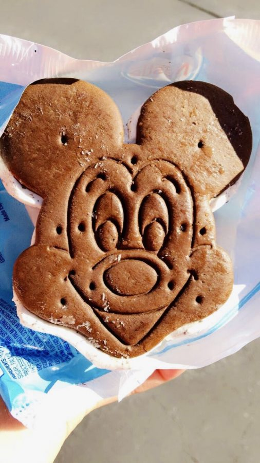 Walt Disney Company is known for many things. It's most popular character and mascot, Mickey Mouse, is one of the world's most recognizable fictional characters and can be seen everywhere throughout the parks.