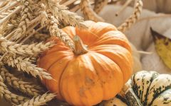 Fall is here! Lets get baking!