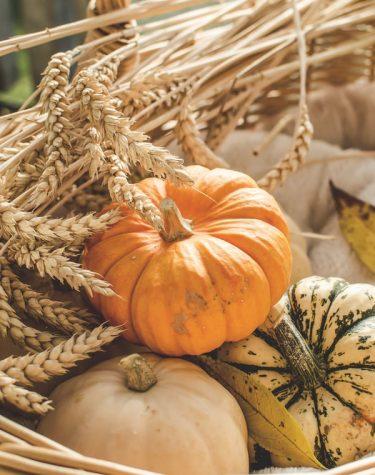 Baking Fall Favorites!